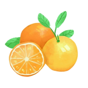 手绘风格切开的橙子水果图片免抠素材