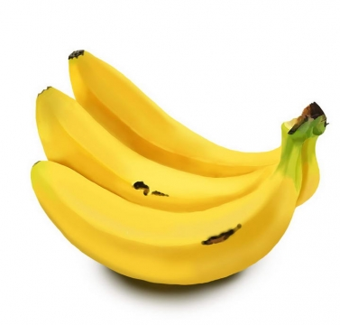逼真的手绘风格香蕉热带水果图片免抠素材