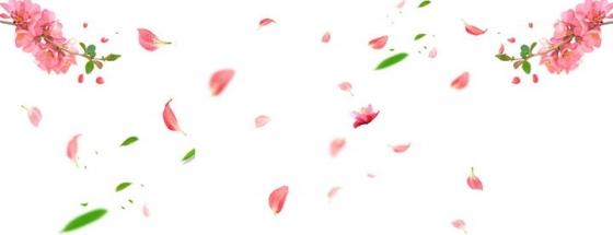 飘舞的粉色的花瓣和树叶装饰图片素材