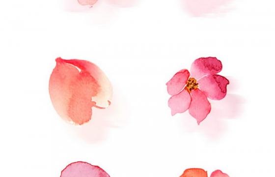 六款水彩画风格的粉色花瓣图片免抠素材