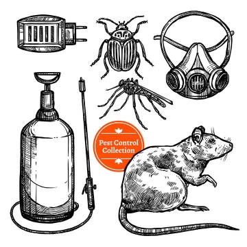 手绘素描风格灭虫杀老鼠配图图片免抠矢量图素材