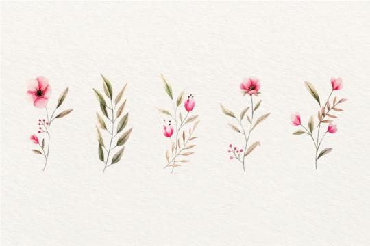 5款水彩画风格的郁金香红色小花朵图片免抠矢量图素材
