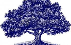 带树根的蓝色大树插画png免抠图片素材