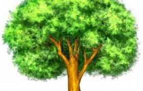 水彩画风格绿油油的大树png免抠图片素材