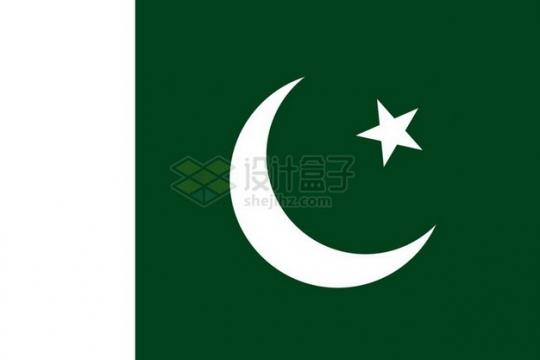 标准版巴基斯坦国旗png免抠图片素材