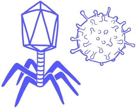 蓝色手绘噬菌体病毒png图片免抠素材