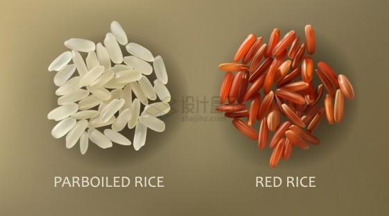大米和红米粮食颗粒png图片免抠矢量素材