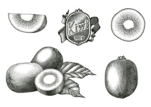 黑色手绘风格猕猴桃奇异果水果图片免抠矢量图素材