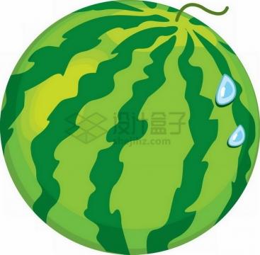 一颗麒麟王西瓜手绘插画png图片素材