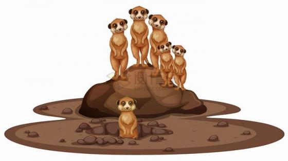 站在土堆上张望的猫鼬非洲大草原野生动物png图片免抠eps矢量素材
