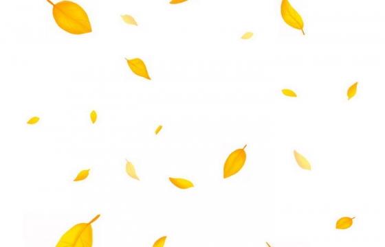 秋天飘舞的黄色树叶免抠PNG图片素材