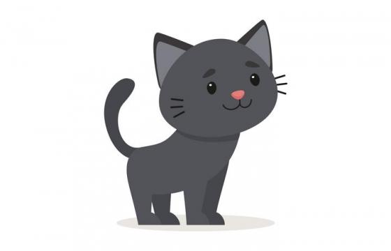 卡通可爱风格深灰色宠物猫小猫图片免抠素材