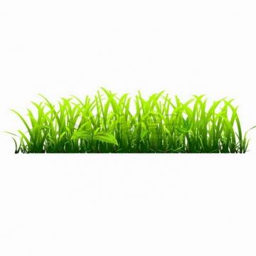 亮绿色的青草丛自然装饰png图片免抠矢量素材
