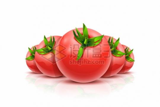 近大远小排列整齐的西红柿番茄596551png矢量图片素材
