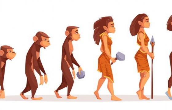 卡通风格人类女人进化史示意图图片免抠素材