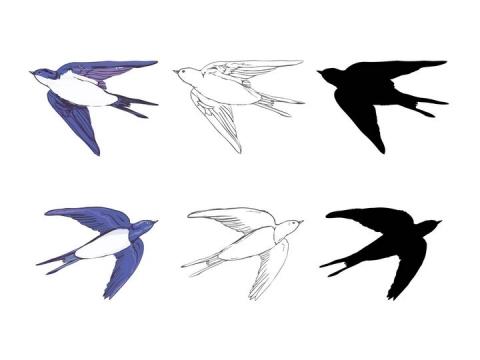 三种手绘风格燕子图片免抠矢量素材