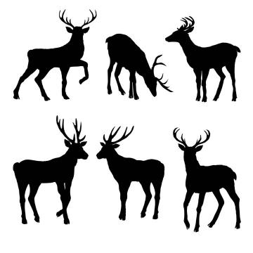 6款梅花鹿驯鹿野生动物剪影图片免抠矢量素材
