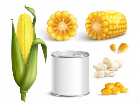 玉米棒子和玉米粒爆米花玉米罐头等玉米制品美食png图片免抠矢量素材