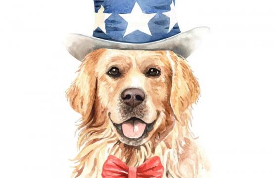 彩色手绘油画风格戴帽子的金毛宠物狗图片免抠素材