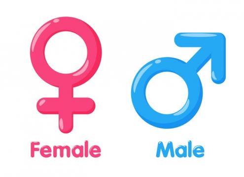 高光风格男女性别标志符号图片免抠素材