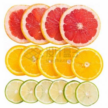 切片的柚子橙子和柠檬摆放整齐png免抠图片素材