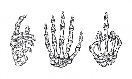 人体骨骼手掌骨头黑色手绘素描风格图片免抠素材