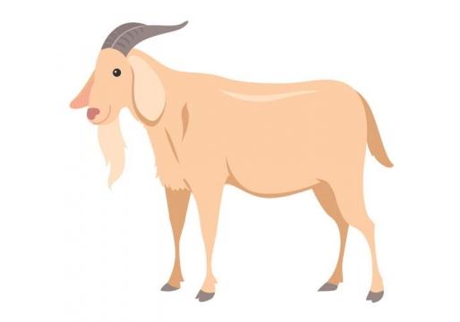 手绘风格山羊家畜图片免抠素材