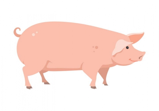 手绘风格家猪家畜牲畜图片免抠素材