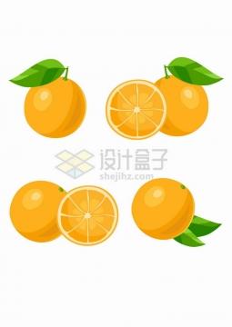 4款橙色的橙子美味水果png图片免抠矢量素材