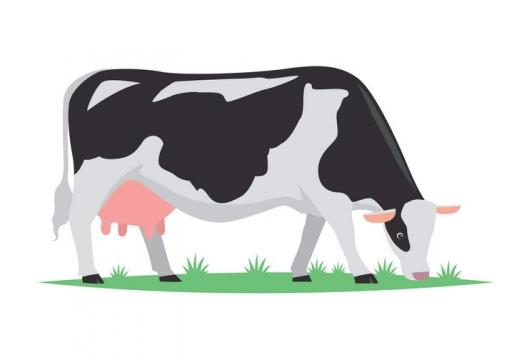 手绘风格正在吃草的奶牛家畜牲畜图片免抠素材