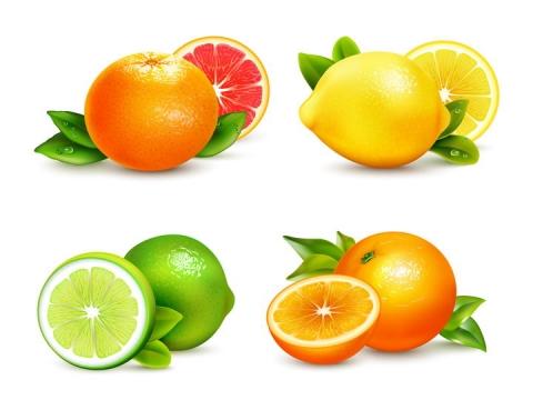 逼真的橙子柠檬和橘子等水果切盘图片免抠素材