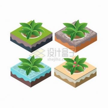 2.5D风格4款小岛上的椰子树png图片免抠矢量素材