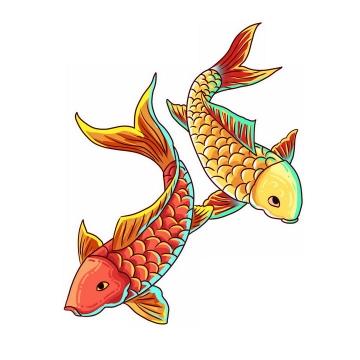 两条红色和金色鲤鱼锦鲤png图片免抠素材